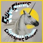 Sufjan Stevens - Silver & Gold Vol. 10 - Christmas Unicorn CD4