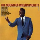 wilson pickett - The Sound Of Wilson Pickett (Vinyl)