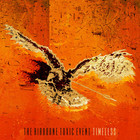 The Airborne Toxic Event - Timeless (CDS)