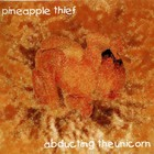The Pineapple Thief - Abducting The Unicorn