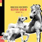 Kevin Drew - Spirit If...