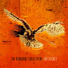 The Airborne Toxic Event - The Secret (EP)