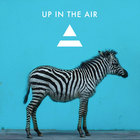 Up In The Air (CDS)