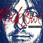 Nick Lowe - Wilderness Years
