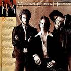 McGuinn, Clark & Hillman (Vinyl)