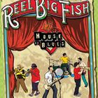 Reel Big Fish - The Show Must Go Off