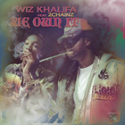 2 Chainz - We Own It (Feat. Wiz Khalifa) (CDS)