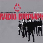 The Essential Radio Birdman (1974-1978)