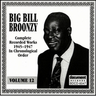 Big Bill Broonzy - Vol. 12 (1945-1947)