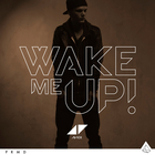 Avicii - Wake Me Up (CDS)