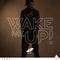 Avicii - Wake Me Up (CDS)