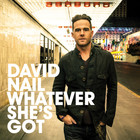 David Nail - Whatever She's Got (CDS)