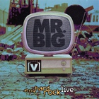 MR. Big - Channel V At The Hard Rock Live