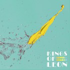 Kings Of Leon - Supersoaker (CDS)