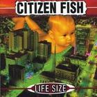 Citizen Fish - Life Size