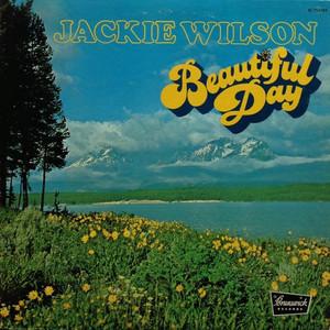Beautiful Day (Vinyl)