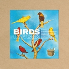 Stephen Vitiello - Birds In A Box (With Machinefabriek)