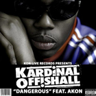 Akon - Dangerous (With Kardinal Offishall) (CDS)