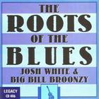 Big Bill Broonzy - Roots Of The Blues