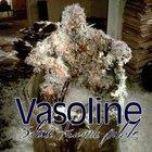 Stone Temple Pilots - Vasoline (MCD)
