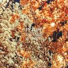 Future Islands - In The Fall (EP)