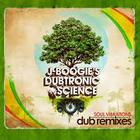 Soul Vibrations (Dub Remixes)