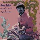 Peter Walker - Second Poem To Karmela (Vinyl)
