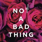 Justin Timberlake - Not A Bad Thing (Explicit) (CDS)