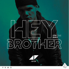 Avicii - Hey Brother (CDS)