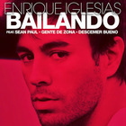 Enrique Iglesias - Bailando (English Version) (CDS)