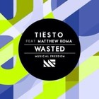 Tiësto - Wasted (CDS)