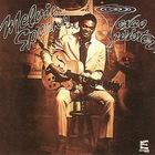 Melvin Sparks - Texas Twister (Vinyl)