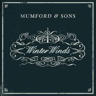 Mumford & Sons - Winter Winds (CDS)