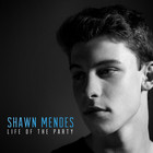 Shawn Mendes - Life Of The Party (CDS)