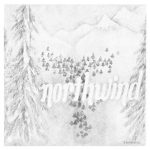 Northwind (Vinyl)