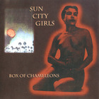 Sun City Girls - Box Of Chameleons CD3