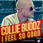 Collie Buddz - I Feel So Good (CDS)