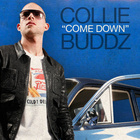 Collie Buddz - Come Down (CDS)