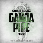 Collie Buddz - Ganja Pipe (CDS)