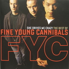 Fine Young Cannibals - She Drives Me Crazy - The Best Of... CD1