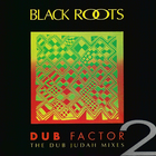 Dub Factor 2 - The Dub Judah Mixes