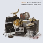 Wilco - What's Your 20? Essential Tracks 1994 - 2014 CD2