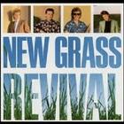 New Grass Revival - New Grass Revival (Vinyl)