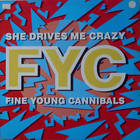 Fine Young Cannibals - She Drives Me Crazy (CDS)