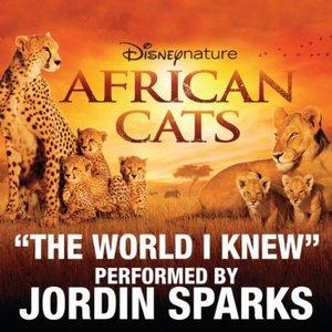 The World I Knew (CDS)