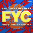 Fine Young Cannibals - She Drives Me Crazy (MCD)