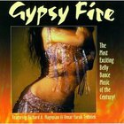 Omar Faruk Tekbilek - Gypsy Fire (With Richard A. Hagopian)