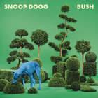 Bush (CDS)