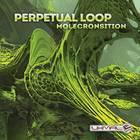 Perpetual Loop - Molecronsition