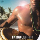 Pure Brazil - Tribal Bahia - The Best Of Timbalada
